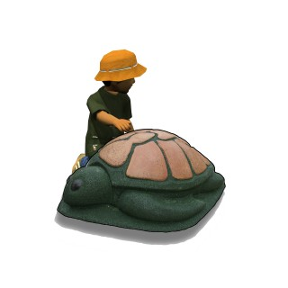 Turtle Extended