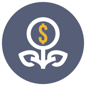 Create additional revenue streams