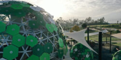The huge geodesic dome on the central raintree